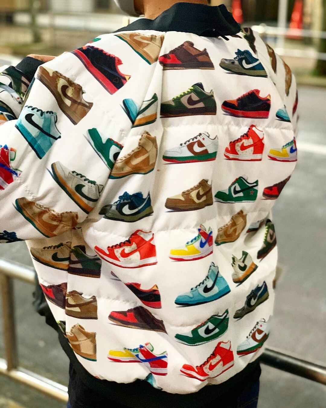 Nike SB Dunk Low Jacket